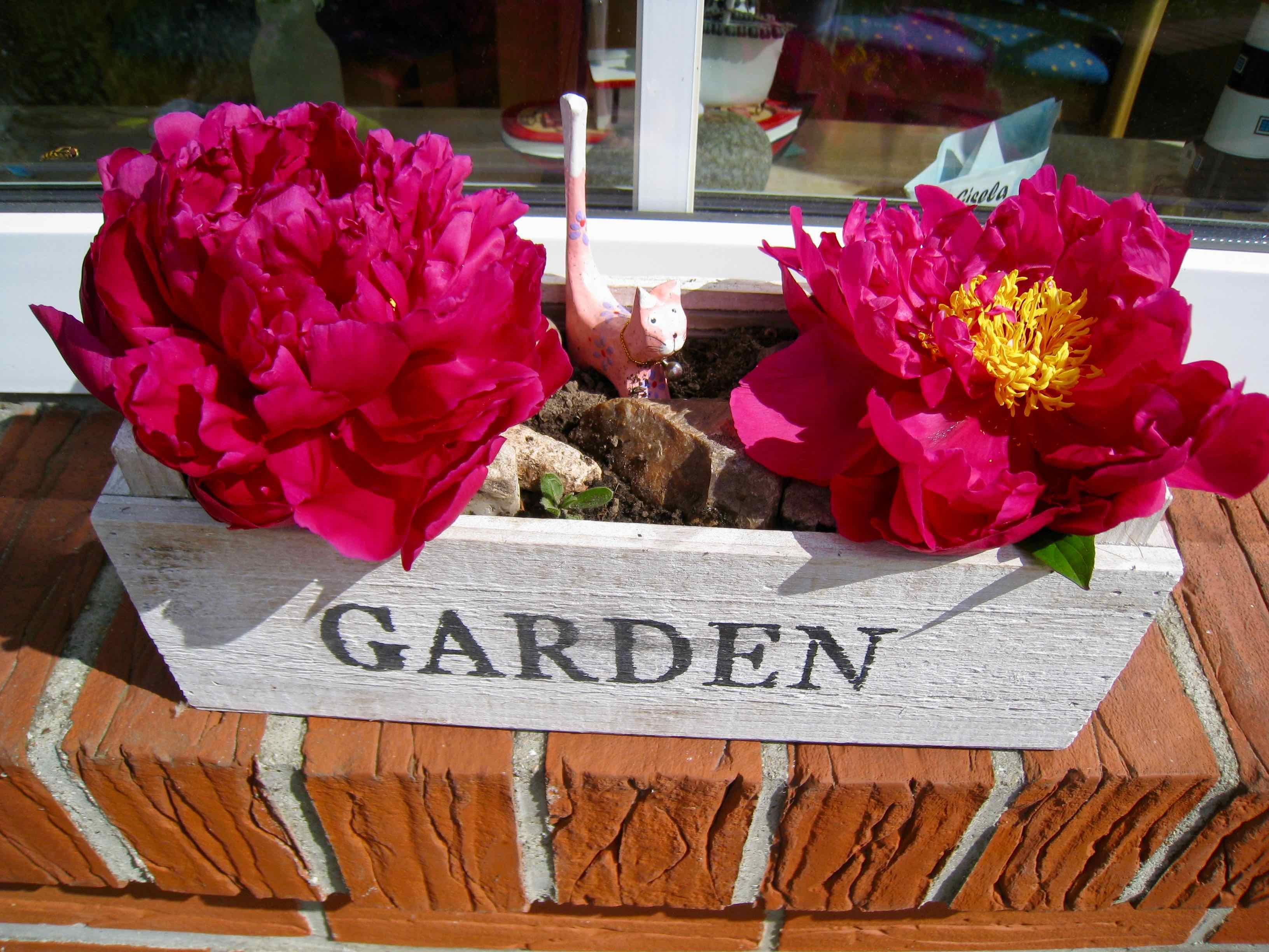 Blumenkasten-Garden