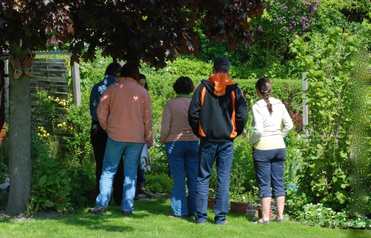 Heilkräuter am Tag der Entspannung in Giselas Garten